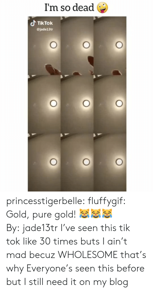Tumblr, Blog, and Mad: I'm so dead  Tik Tok  @jade13tr princesstigerbelle:  fluffygif:  Gold, pure gold! 😹😹😹By: jade13tr  I've seen this tik tok like 30 times buts I ain't mad becuz WHOLESOME that's why   Everyone's seen this before but I still need it on my blog