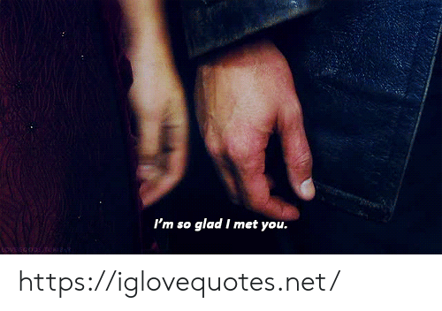 Net, You, and Glad: I'm so glad I met you. https://iglovequotes.net/