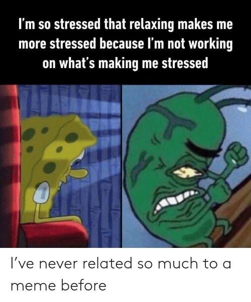 Meme, Never, and Working: I'm so stressed that relaxing makes me  more stressed because l'm not working  on what's making me stressed I've never related so much to a meme before
