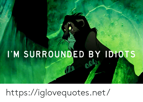 surrounded: I'M SURROUNDED BY IDIOTS https://iglovequotes.net/