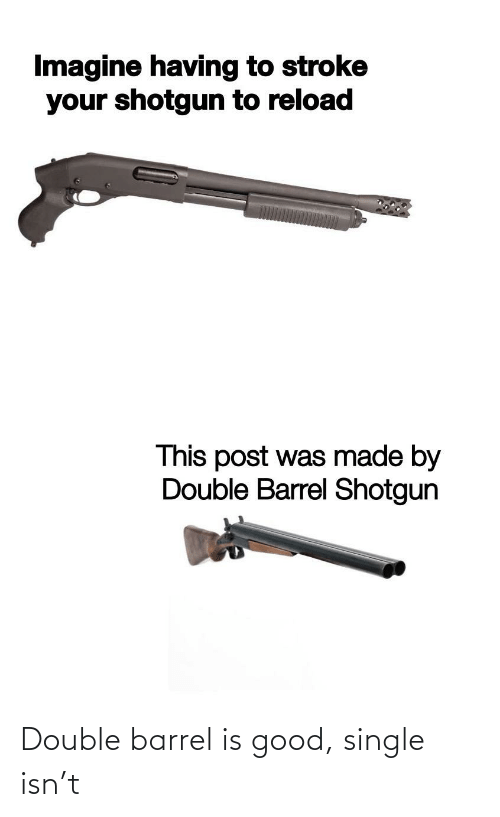 Barrel Shotgun: Imagine having to stroke  your shotgun to reload  This post was made by  Double Barrel Shotgun Double barrel is good, single isn't