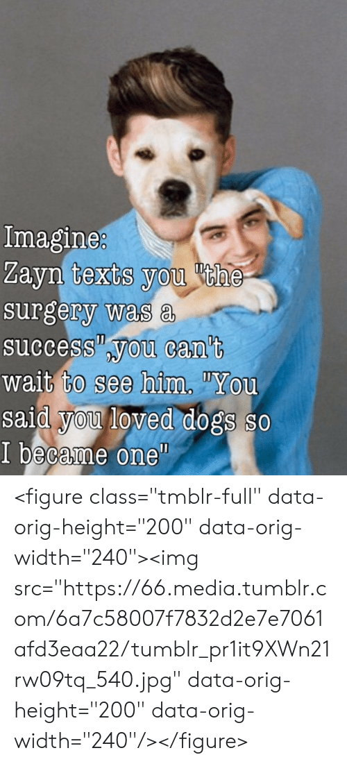 """Dogs, Tumblr, and Success: Imagine  Zayn texts you he  surgery was a  success you can't  wait to see him""""You  said you loved dogs so  I became one""""  0 <figure class=""""tmblr-full"""" data-orig-height=""""200"""" data-orig-width=""""240""""><img src=""""https://66.media.tumblr.com/6a7c58007f7832d2e7e7061afd3eaa22/tumblr_pr1it9XWn21rw09tq_540.jpg"""" data-orig-height=""""200"""" data-orig-width=""""240""""/></figure>"""
