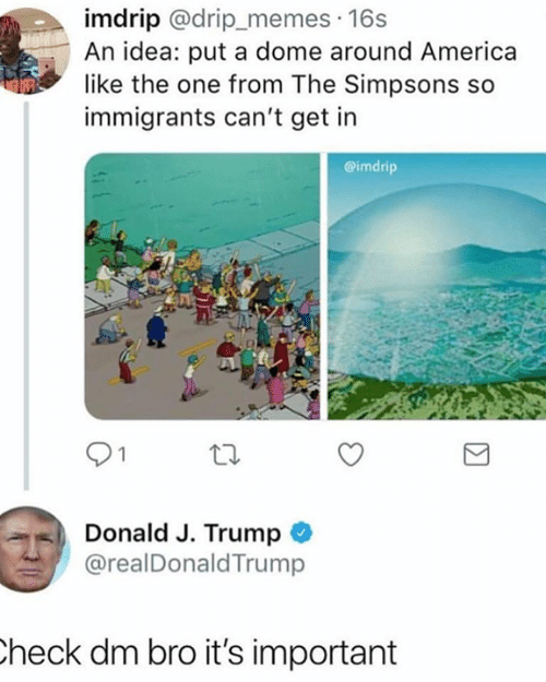 America, Memes, and The Simpsons: imdrip @drip_memes 16s  An idea: put a dome around America  like the one from The Simpsons so  immigrants can't get in  @imdrip  Donald J. Trump  @realDonaldTrump  heck dm bro it's important