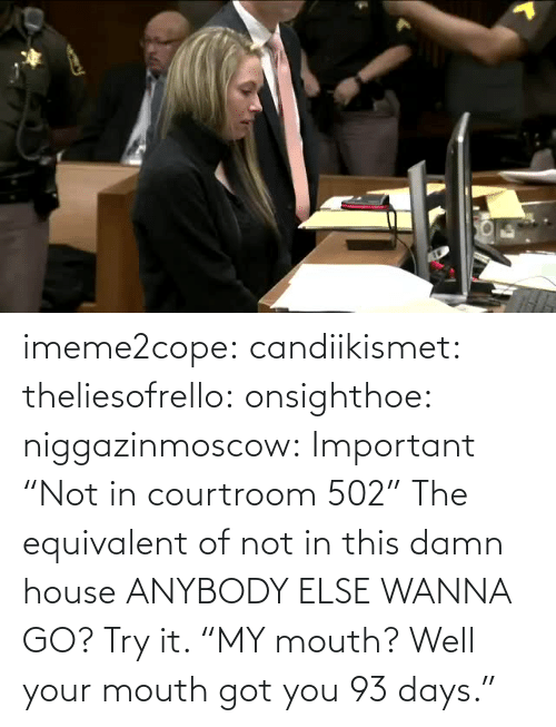 "mouth: imeme2cope:  candiikismet:   theliesofrello:   onsighthoe:   niggazinmoscow:  Important  ""Not in courtroom 502""   The equivalent of not in this damn house    ANYBODY ELSE WANNA GO?  Try it.     ""MY mouth? Well your mouth got you 93 days."""