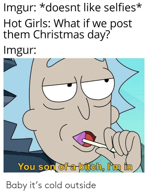Imgur: Imgur: *doesnt like selfies*  Hot Girls: What if we post  them Christmas day?  Imgur:  You son of a-bitch, I'm in Baby it's cold outside