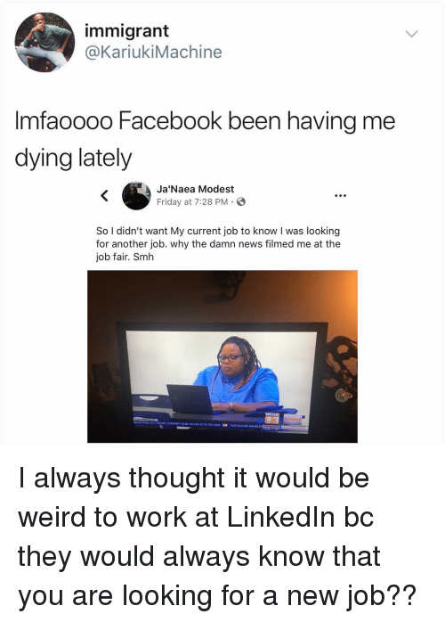 modest: immigrant  @KariukiMachine  Imfaoooo Facebook been having me  dying lately  Ja'Naea Modest  Friday at 7:28 PM. E  S.  So I didn't want My current job to know I was looking  for another job. why the damn news filmed me at the  job fair. Smh I always thought it would be weird to work at LinkedIn bc they would always know that you are looking for a new job??