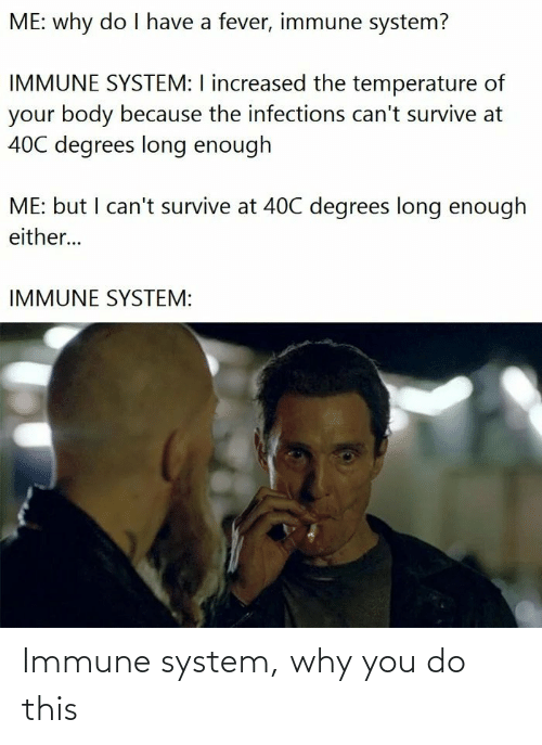 system: Immune system, why you do this