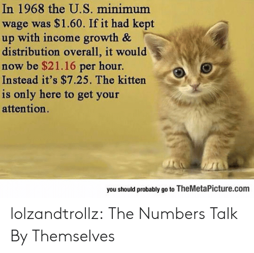 Minimum Wage: In 1968 the U.S. minimum  wage was $1.60. If it had kept  up with income growth &  distribution overall, it would  now be $21.16 per hour.  Instead it's $7.25. The kitten  is only here to get your  attention.  you should probably go to TheMetaPicture.com lolzandtrollz:  The Numbers Talk By Themselves