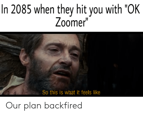 """They, You, and What: In 2085 when they hit you with """"OK  Zoomer  So this is what it feels like Our plan backfired"""