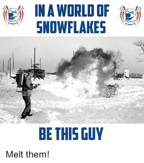 Memes, World, and 🤖: IN A WORLD OF  SNOWLKES  BE THIS GUY Melt them!