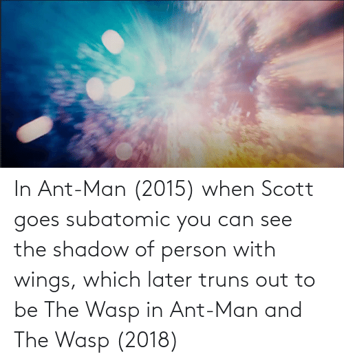 Wings: In Ant-Man (2015) when Scott goes subatomic you can see the shadow of person with wings, which later truns out to be The Wasp in Ant-Man and The Wasp (2018)