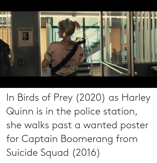 Harley: In Birds of Prey (2020) as Harley Quinn is in the police station, she walks past a wanted poster for Captain Boomerang from Suicide Squad (2016)