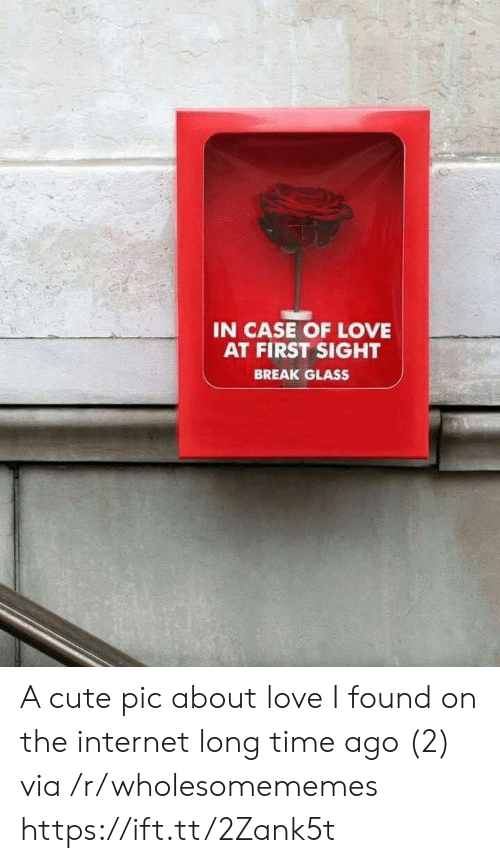 Cute, Internet, and Love: IN CASE OF LOVE  AT FIRST SIGHT  BREAK GLASS A cute pic about love I found on the internet long time ago (2) via /r/wholesomememes https://ift.tt/2Zank5t