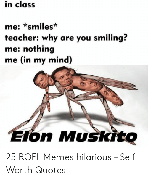 Memes, Teacher, and Quotes: in class  me: *smiles*  teacher: why are you smiling?  me: nothing  me (in my mind)  Elon Muskito 25 ROFL Memes hilarious – Self Worth Quotes