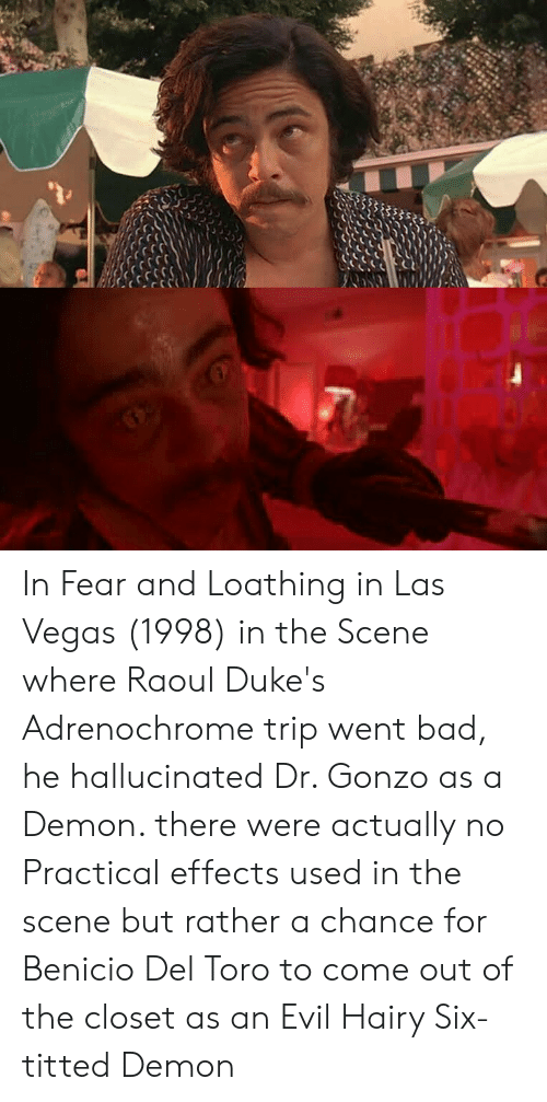 Come Out Of The Closet: In Fear and Loathing in Las Vegas (1998) in the Scene where Raoul Duke's Adrenochrome trip went bad, he hallucinated Dr. Gonzo as a Demon. there were actually no Practical effects used in the scene but rather a chance for Benicio Del Toro to come out of the closet as an Evil Hairy Six-titted Demon