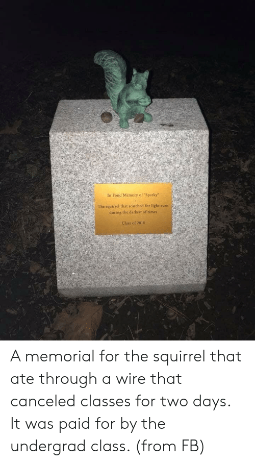 "Darkest: In Fond Memory of ""Sparky""  The squirrel that searched for light even  during the darkest of times  Class of 2018 A memorial for the squirrel that ate through a wire that canceled classes for two days. It was paid for by the undergrad class. (from FB)"