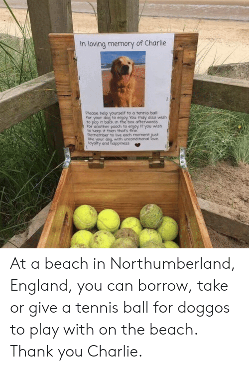 Charlie, England, and Pop: In loving memory of Charlie  Please help yourself to a tennis ball  for your dog to enjoy You may also wish  to pop it back in the box afterwards  I for another pooch to enjoy If you wish  to keep it then thats fine  Remember to live each moment just  with unconditional  loyalty and happiness At a beach in Northumberland, England, you can borrow, take or give a tennis ball for doggos to play with on the beach. Thank you Charlie.