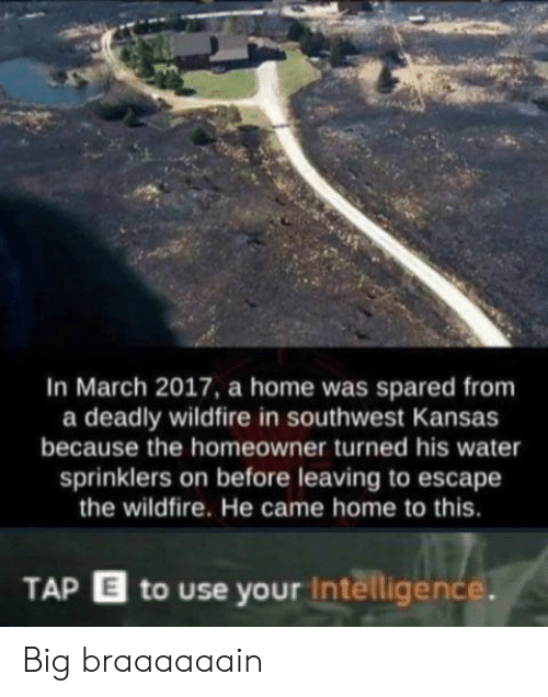 Home, Southwest, and Water: In March 2017, a home was spared from  a deadly wildfire in southwest Kansas  because the homeowner turned his water  sprinklers on before leaving to escape  the wildfire. He came home to this.  TAP E to use your intelligence. Big braaaaaain