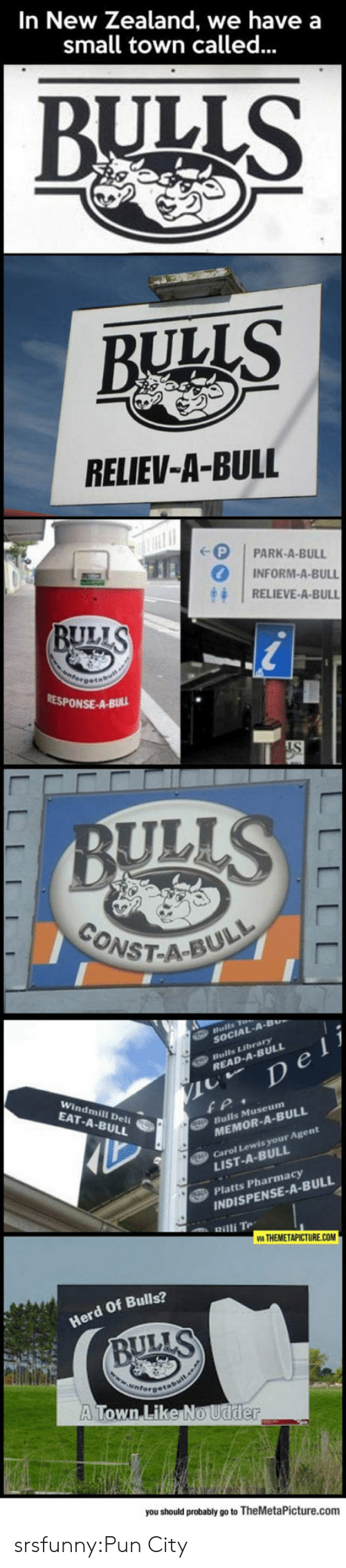 Relieve: In New Zealand, we have a  small town called...  BULLS  BULLS  RELIEV-A-BULL  (-( | PARK-A-BULL  0 | INFORM-A-BULL  忏1 RELIEVE-A-BULL  BUL  RESPONSE-A-Buu  CONST-AcE  ST-A-BUL  SOCIAL-A  READ-A-BULL  Windmill Deli  EAT-A-BULL  Bulls Museum  MEMOR-A-BULL  Carol Lewis your Agent  LIST-A-BULL  Platts Pharmacy  INDISPENSE-A-BULL  Herd Of Bulls?  ULLS  A Town Like  you should probably go to TheMetaPicture.comm srsfunny:Pun City