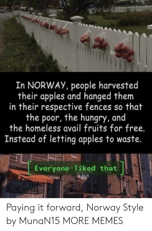 fruits: In NORWAY, people harvested  their apples and hanged them  in their respective fences so that  the poor, the hungry, and  the homeless avail fruits for free.  Instead of letting apples to waste.  Everyone liked that Paying it forward, Norway Style by MunaN15 MORE MEMES