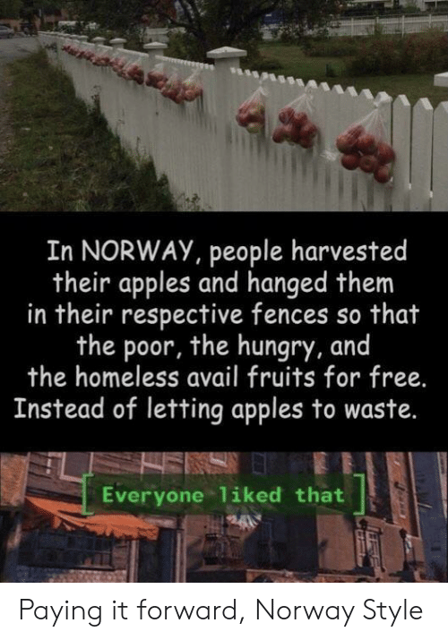 fruits: In NORWAY, people harvested  their apples and hanged them  in their respective fences so that  the poor, the hungry, and  the homeless avail fruits for free.  Instead of letting apples to waste.  Everyone liked that Paying it forward, Norway Style