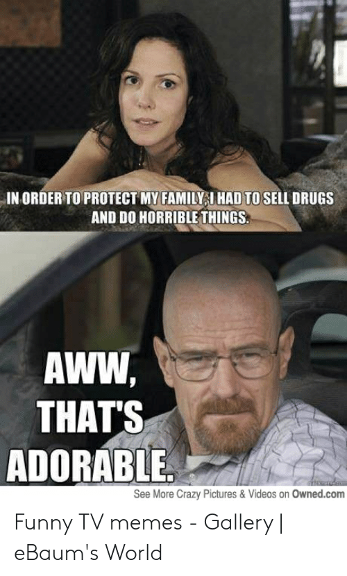 Funny Tv Memes: IN ORDER TO PROTECT MY FAMILYI HAD TO SELL DRUGS  AND DO HORRIBLE THINGS  AWW  THAT'S  ADORABLE  See More Crazy Pictures & Videos on Owned.com Funny TV memes - Gallery | eBaum's World