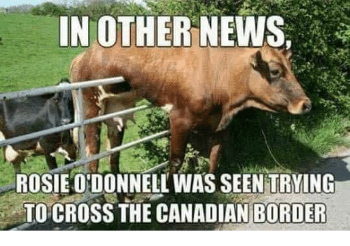 Mexican Word of the Day: IN OTHER NEWS,  ROSIE ONDONNELL WAS SEEN TRYING  TO CROSS THE CANADIAN BORDER