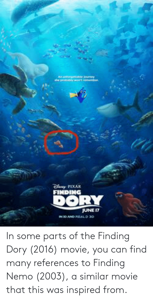 Finding Nemo: In some parts of the Finding Dory (2016) movie, you can find many references to Finding Nemo (2003), a similar movie that this was inspired from.