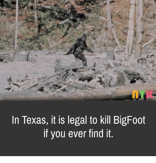 In Texas It Is Legal to Kill BigFoot if You Ever Find It | Bigfoot