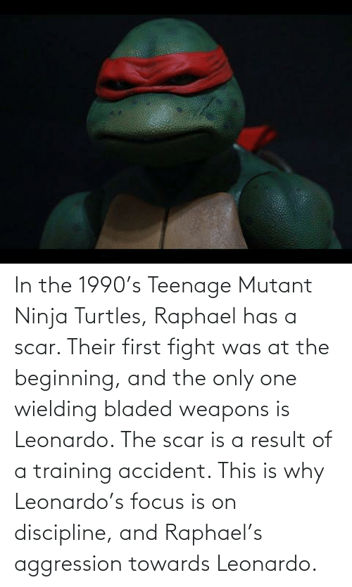 turtles: In the 1990's Teenage Mutant Ninja Turtles, Raphael has a scar. Their first fight was at the beginning, and the only one wielding bladed weapons is Leonardo. The scar is a result of a training accident. This is why Leonardo's focus is on discipline, and Raphael's aggression towards Leonardo.