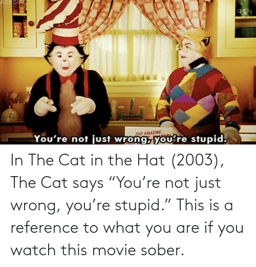 """Sober: In The Cat in the Hat (2003), The Cat says """"You're not just wrong, you're stupid."""" This is a reference to what you are if you watch this movie sober."""