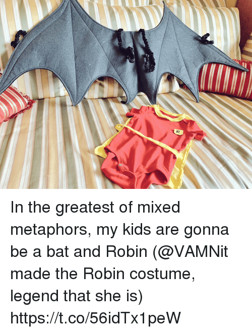 Memes, Kids, and 🤖: In the greatest of mixed metaphors, my kids are gonna be a bat and Robin (@VAMNit made the Robin costume, legend that she is) https://t.co/56idTx1peW