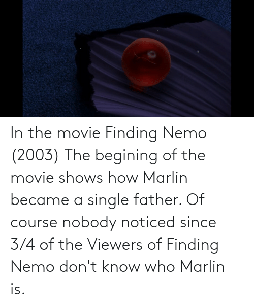 Finding Nemo: In the movie Finding Nemo (2003) The begining of the movie shows how Marlin became a single father. Of course nobody noticed since 3/4 of the Viewers of Finding Nemo don't know who Marlin is.