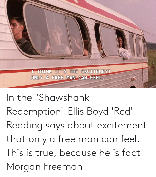 """excitement: In the """"Shawshank Redemption"""" Ellis Boyd 'Red' Redding says about excitement that only a free man can feel. This is true, because he is fact Morgan Freeman"""