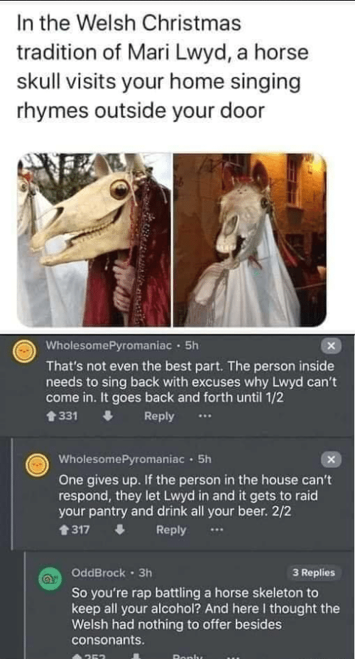 Alcohol: In the Welsh Christmas  tradition of Mari Lwyd, a horse  skull visits your home singing  rhymes outside your door  WholesomePyromaniac · 5h  That's not even the best part. The person inside  needs to sing back with excuses why Lwyd can't  come in. It goes back and forth until 1/2  會331  Reply  WholesomePyromaniac · 5h  One gives up. If the person in the house can't  respond, they let Lwyd in and it gets to raid  your pantry and drink all your beer. 2/2  1317  Reply  OddBrock · 3h  3 Replies  So you're rap battling a horse skeleton to  keep all your alcohol? And here I thought the  Welsh had nothing to offer besides  consonants.  Ronlu