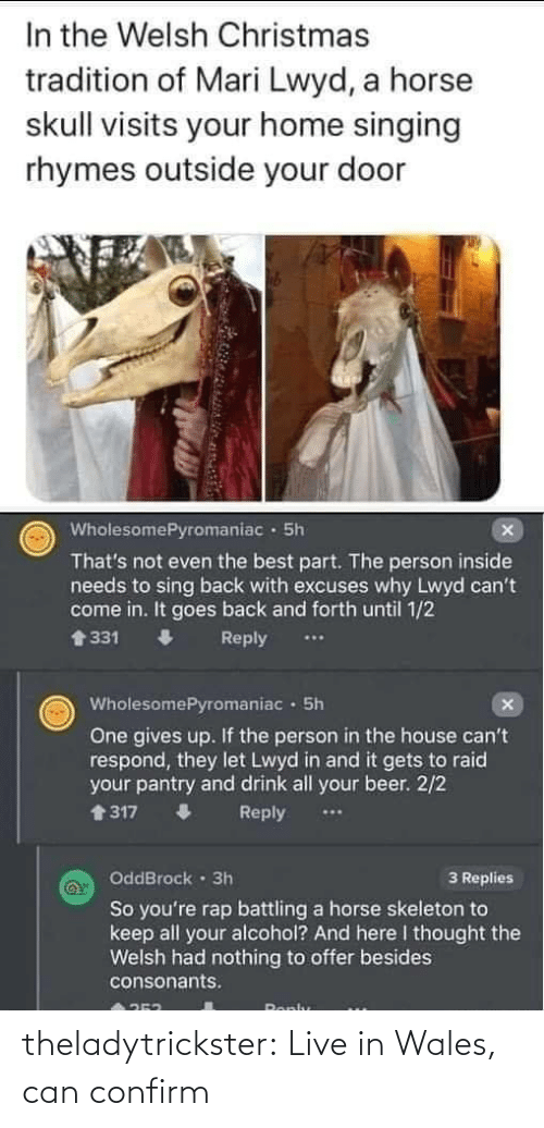 Alcohol: In the Welsh Christmas  tradition of Mari Lwyd, a horse  skull visits your home singing  rhymes outside your door  WholesomePyromaniac · 5h  That's not even the best part. The person inside  needs to sing back with excuses why Lwyd can't  come in. It goes back and forth until 1/2  會331  Reply  WholesomePyromaniac · 5h  One gives up. If the person in the house can't  respond, they let Lwyd in and it gets to raid  your pantry and drink all your beer. 2/2  1317  Reply  OddBrock · 3h  3 Replies  So you're rap battling a horse skeleton to  keep all your alcohol? And here I thought the  Welsh had nothing to offer besides  consonants.  Ronlu theladytrickster:  Live in Wales, can confirm