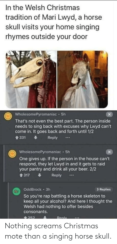 Alcohol: In the Welsh Christmas  tradition of Mari Lwyd, a horse  skull visits your home singing  rhymes outside your door  WholesomePyromaniac · 5h  That's not even the best part. The person inside  needs to sing back with excuses why Lwyd can't  come in. It goes back and forth until 1/2  1 331  Reply  ..  WholesomePyromaniac 5h  One gives up. If the person in the house can't  respond, they let Lwyd in and it gets to raid  your pantry and drink all your beer. 2/2  會317  Reply  OddBrock · 3h  So you're rap battling a horse skeleton to  keep all your alcohol? And here I thought the  Welsh had nothing to offer besides  3 Replies  consonants.  會252  Reply Nothing screams Christmas mote than a singing horse skull.