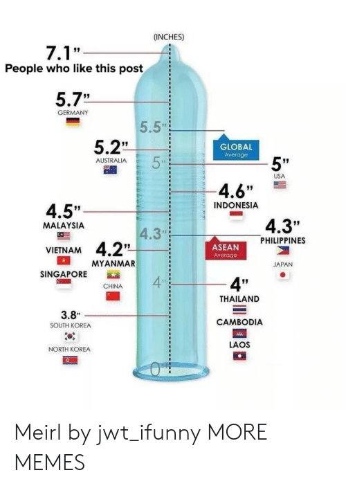 """Indonesia: (INCHES)  People who like this post  5.7""""  GERMANY  5.5""""  5.2""""  GLOBAL  Average  5""""  AUSTRALIA  USA  4.6""""  INDONESIA  4.5""""  4.3""""  MALAYSIA  4.3""""  PHILIPPINES  ASEAN  Average  VIETNAM  MYANMAR  JAPAN  SINGAPORE  4  4""""  CHINA  THAILAND  CAMBODIA  LAOS  3.8""""  SOUTH KOREA  NORTH KOREA Meirl by jwt_ifunny MORE MEMES"""