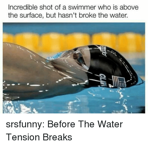 swimmer: Incredible shot of a swimmer who is above  the surface, but hasn't broke the water. srsfunny:  Before The Water Tension Breaks