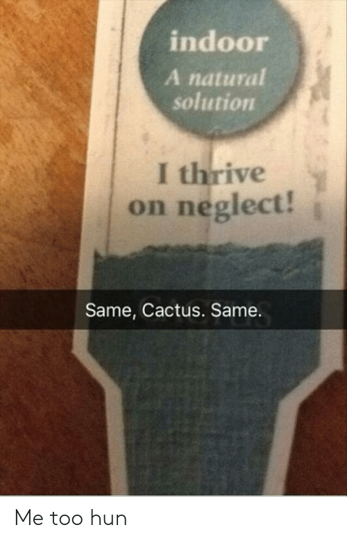 Cactus, Thrive, and Me Too: indoor  A natural  solution  I thrive  on neglect!  Same, Cactus. Same. Me too hun
