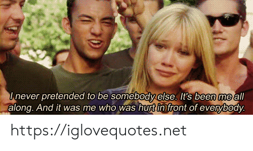 Been, Net, and Who: Inever pretended to be somebody else. It's been me all  along. And it was me who was hurt in front of everybody. https://iglovequotes.net