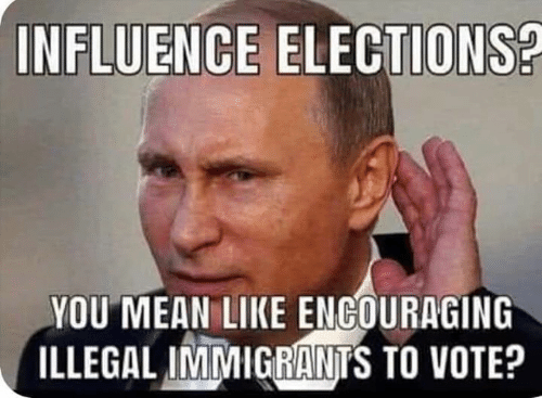 Elections: INFLUENCE ELECTIONS?  YOU MEAN LIKE ENGOURAGING  ILLEGALINİMIGGA NTS TO VOTE?
