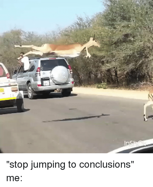 """conclusive: Ins """"stop jumping to conclusions"""" me:"""