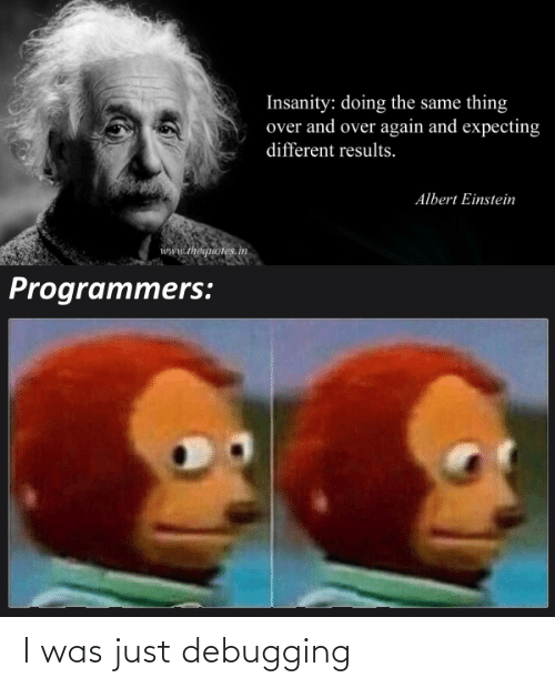 Einstein: Insanity: doing the same thing  over and over again and expecting  different results.  Albert Einstein  www.thequotes.in  Programmers: I was just debugging