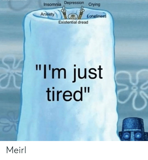"""Insomnia: Insomnia Depression  Crying  An  xiet  Loneline  Existential dread  """"I'm just  tired"""" Meirl"""