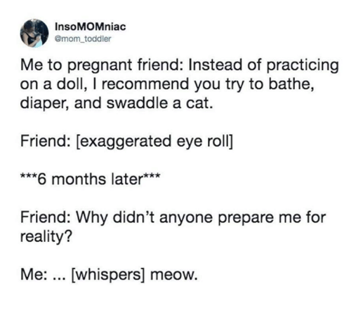 Bathe: InsoMOMniac  @mom toddler  Me to pregnant friend: Instead of practicing  on a doll, I recommend you try to bathe,  diaper, and swaddle a cat.  Friend: [exaggerated eye roll]  ***6 months later***  Friend: Why didn't anyone prepare me for  reality?  Me:... [whispers] meow.