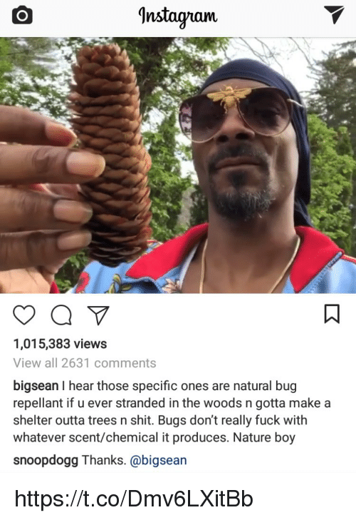 Bigsean: Instagram.  1,015,383 views  View all 2631 comments  bigsean I hear those specific ones are natural bug  repellant if u ever stranded in the woods n gotta make a  shelter outta trees n shit. Bugs don't really fuck with  whatever scent/chemical it produces. Nature boy  snoopdogg Thanks. @bigsean https://t.co/Dmv6LXitBb