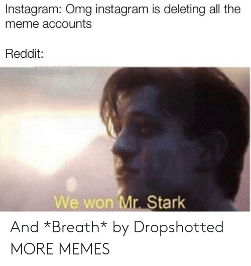 We Won: Instagram: Omg instagram is deleting all the  meme accounts  Reddit:  We won Mr. Stark And *Breath* by Dropshotted MORE MEMES