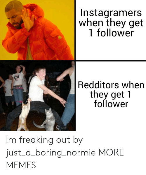 follower: Instagramers  when they get  1 follower  Redditors when  they get 1  follower Im freaking out by just_a_boring_normie MORE MEMES