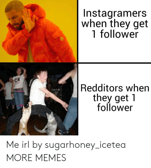 follower: Instagramers  when they get  1 follower  Redditors when  they get 1  follower Me irl by sugarhoney_icetea MORE MEMES